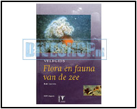 Fieldguide Flora and Fauna of the sea
